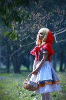 Red Riding Hood - 2nd set by MissAnsa