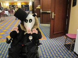 New fursuit Orson the Opossum by Doom-Wulf