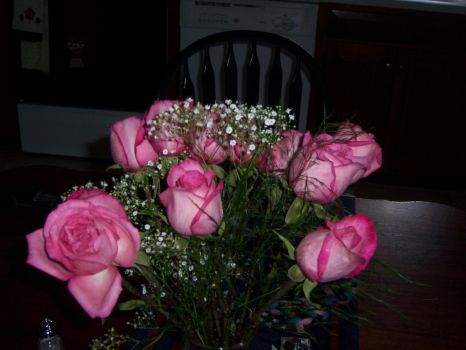 Pink Roses by Paige-1
