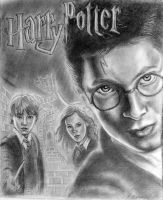 Harry potter by briannam7900