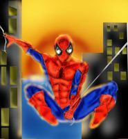 The Amazing Spider-Man by Gotham-Knight