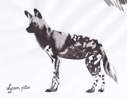 African hunting dog by Dontknowwhattodraw94