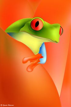 Red Eye Frog by itaocta