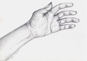 My Hand by CaylaLydon