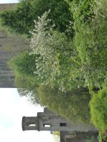 castle in Blarney 1 by indeed-stock