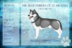 BPIS M!K Blue Embers Of St. Michael SD by xMush-Kennelsx