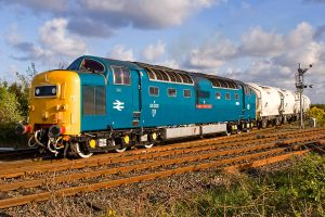Deltic - May 2011 by neonwilderness