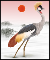 Grey Crowned Crane by Forbidding