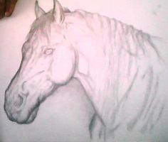 NEEDS CRIT BEFORE SHADING by J0anna3