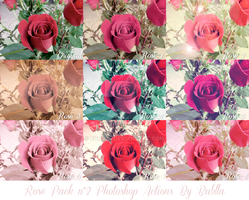 Pack n2 Roses Photoshop Actions by Bublla