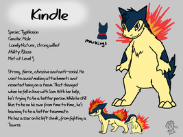 Kindle Reference Sheet by DragonwolfRooke