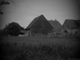 Old Barn by TheFlyingHeart
