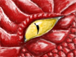 Dragon Eye by icepenguin26