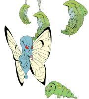 Caterpie, Metapod, and Butterfree by Squidinkify