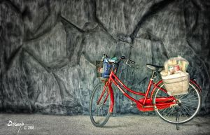 Bicycle by dhead