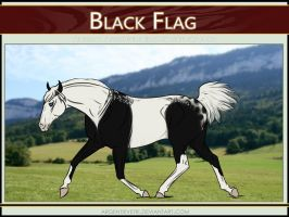 6385 AS Black Flag - SOLD by Argentievetri
