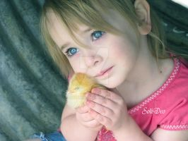 Baby Chicks by SoliDeo