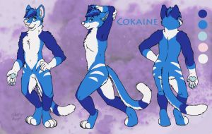 Cokaine Ref Sheet by SilentRavyn