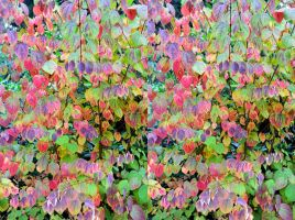 We Heart Autumn Leaves In 3-D by aegiandyad