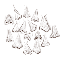 Nose Study #2 by Chirko