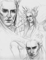 Elvenking by blackrose81