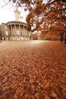 Philly Fall II by bewing