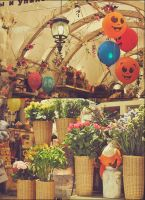 flower shop by irees