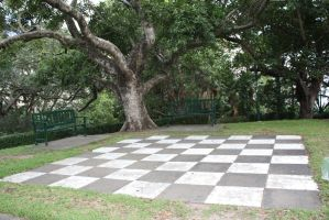 Chess board 3700 by fa-stock
