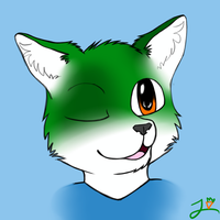 Wink by CoolCodeCat