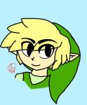 Toon Link by Hedgehog-Xchad