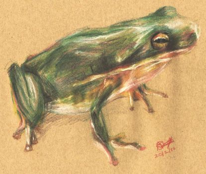 Frog by Anjali25