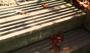 Fall on my stairs by khrabak0326