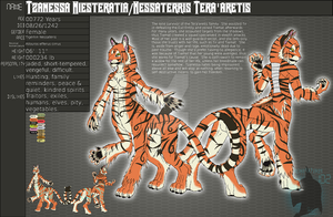 Character sheet: Tzanessa by FrostWyrm102
