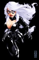 Black Cat by diablo2003