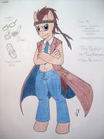 The Equestrian Time Lord by Yami-Sonic