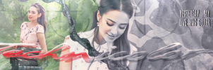 Banner Shay by TamieGallery