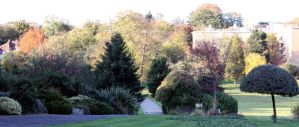 Sydenham Wells Autumn Panorama by aegiandyad