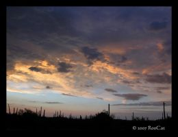 Ominous Sonoran Storm Sunset by RooCat