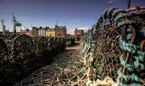 Arbroath Fishing Life by BusterBrownBB