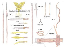 The Roman Army III: Weapons of War by jefffletcher