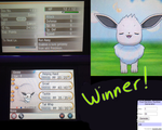 Shiny Eevee giveaway! by RegallyFlawed