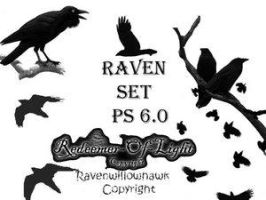 Raven Set 6.0 by Insan-Stock
