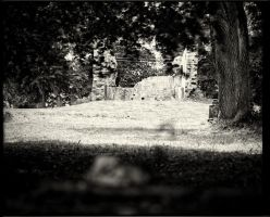 Traces 13 by HorstSchmier