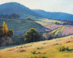Afternoon Light Tarana, Australia by artsaus