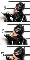 Catwoman Loves the Bird by Colorful-Ayako