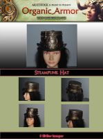 OA-Steampunk Hat by Muttstock