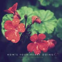 How's your heart doing? by lalitkala