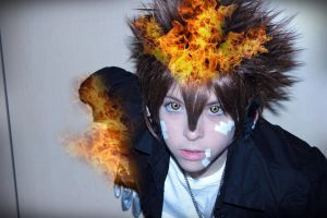 Tsuna's flame! by AriB-Rabbit