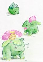 Sleepy Bulbasaur Family by ankewehner