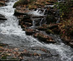 Pond Run Creek 1 by The-Assistant